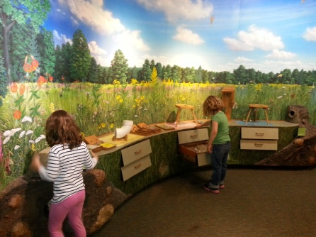 Exploring the exhibits at Denison Pequotsepos Nature Center