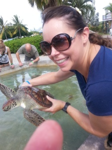 Baby sea turtles are hard to catch