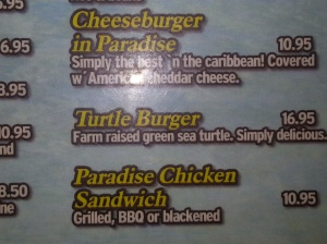 Yes, I ate a turtle burger