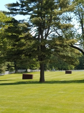 Richard Serra's Ali-Frazier (they're boxes--get it?)