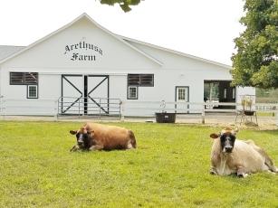Arethusa Farm