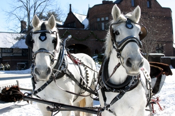 Sleigh ride at Blantyre