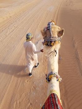 Arabian Nights safari photo courtesy Arabian Nights