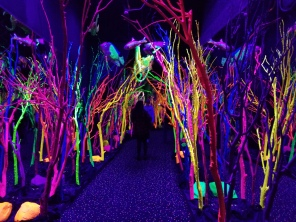 Neon giant coral flank an underwater-themed passageway. Photo by Anastasia Mills Healy