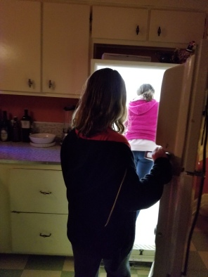 This is a photo of my children walking into a refrigerator at the incredibly creative House of Eternal Return dreamed up by an arts collective in Santa Fe called Meow Wolf